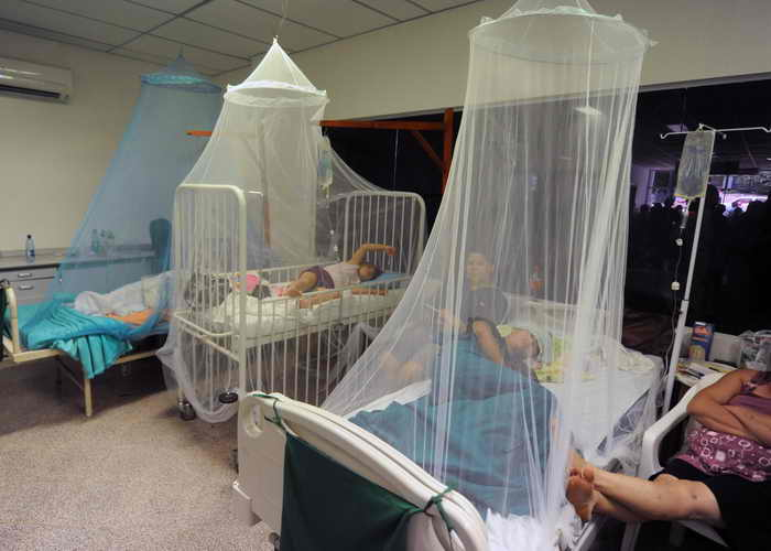 В Парагвае число жертв лихорадки денге составило более 240 человек. Фото: NORBERTO DUARTE/AFP/Getty Images