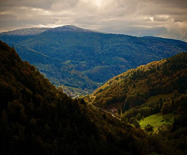 Сказочный лес Шварцвальд. Фото с сайта new.ba-bamail.co.il