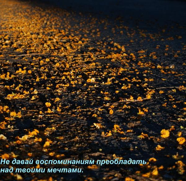 Жизнь — сама по себе Муза.  Фото: Хава Тор/Великая Эпоха (The Epoch Times)