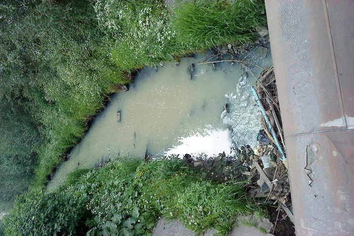 Предприятие, изготовляющее продукты питания, отравляет реку. Фото предоставлено пресс-службой МЭОО «Зелёный фронт»