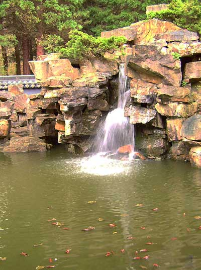 живописный водопад. Китайский сад. Ботанический сад Рурского университета Бохум. Фото: Сергей Ярош.