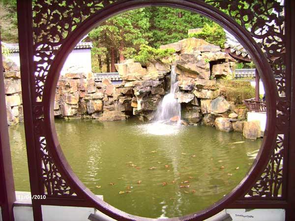 Вид из окна. Китайский сад. Ботанический сад Рурского университета Бохум. Фото: Сергей Ярош.