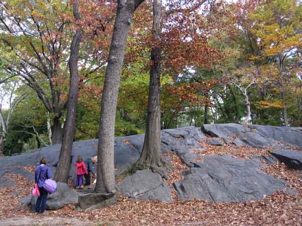 Центральный парк Нью-Йорка в конце золотой осени. Фото: Ирина Лаврентьева/Великая Эпоха