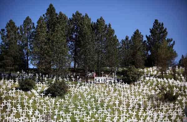 Могилы погибших в Ираке американских солдат. Фото: Justin Sullivan/ Getty Images