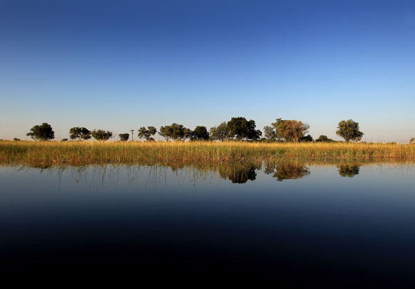 Река Окаванго. Фото: Chris Jackson/Getty Images