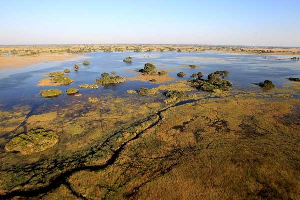 Дельта реки Окаванго. Фото: Chris Jackson/Getty Images