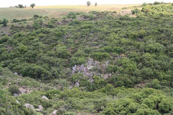 Ущелья, поросшие зеленью. Халкидики. Фото: Сима Петрова/Великая Эпоха