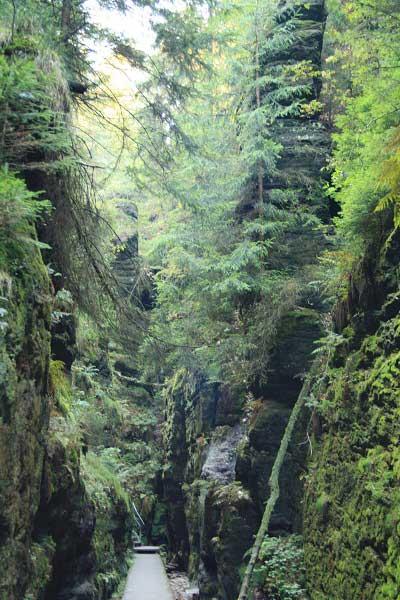 Сказочные ущелья. Саксонская Швейцария. Фото: Сима Петрова/Великая Эпоха