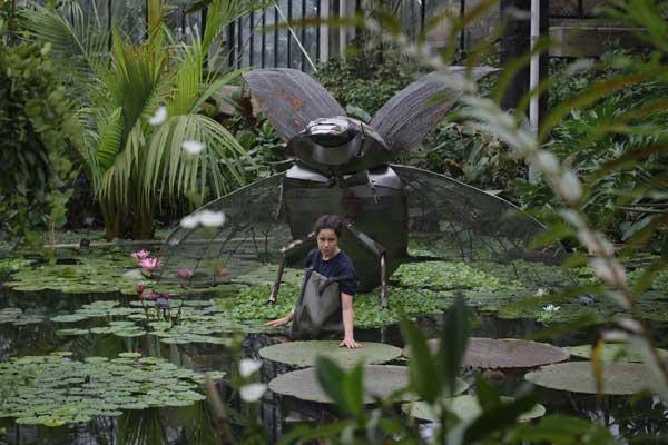 В одной из оранжерей Садов Кью. Фото: Dan Kitwood/Getty Images