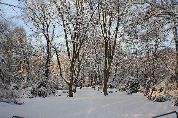 «Белое Рождество» в Германии. Фото: Сима Петрова/Великая Эпоха