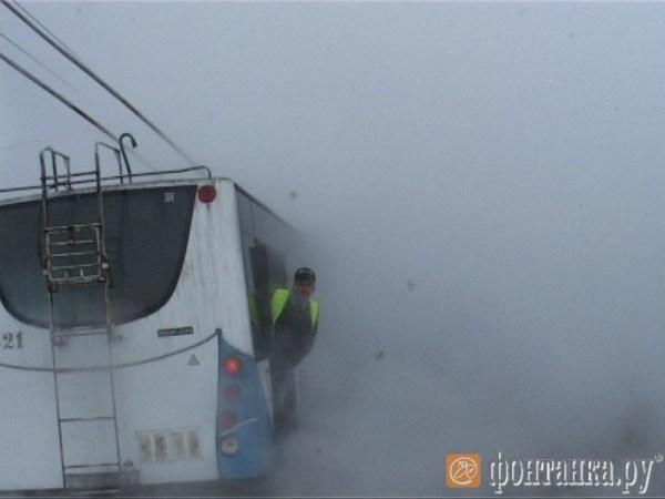 В Петербурге троллейбус с людьми попал в озеро кипятка. Фото: fontanka.ru