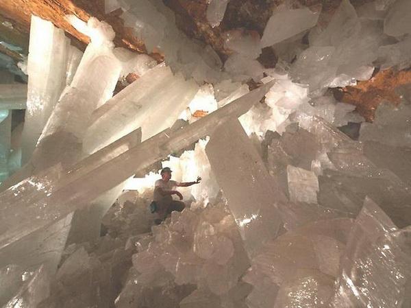 Пещера гигантских кристаллов. Фото с сайта animalworld.com.ua