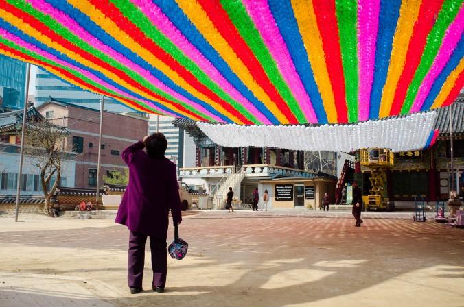 Женщина останавливается, чтобы полюбоваться бумажными фонарями в храме Jogye 4 мая. Фото: Jarrod Hall/Великая Эпоха (The Epoch Times)
