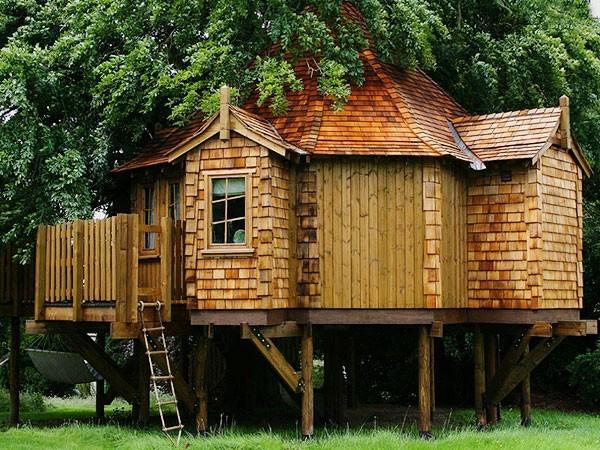 Дома на деревьях. Фото с сайта amazontreehouses.com
