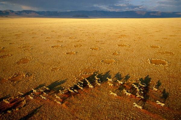 Пески времен. Фото: George Steinmetz