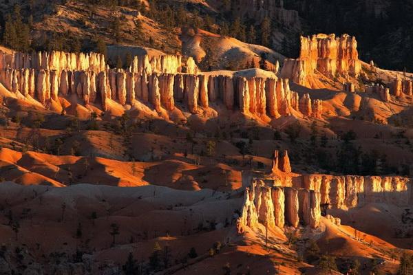 Каньон Брайс. Густые хвойные леса, окружающие склоны каньона, а также высокогорные луга добавляют очарования этому удивительному по красоте месту. Ежегодно парк посещают около 1,5 миллионов туристов. Фото: Джейсон Сэмпсон