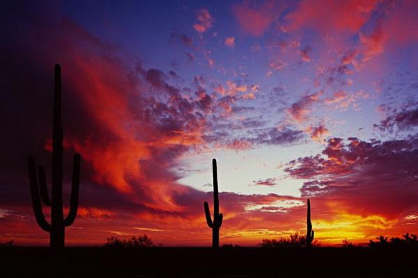 Закат в Аризоне. Фото: Джейсон Сэмпсон