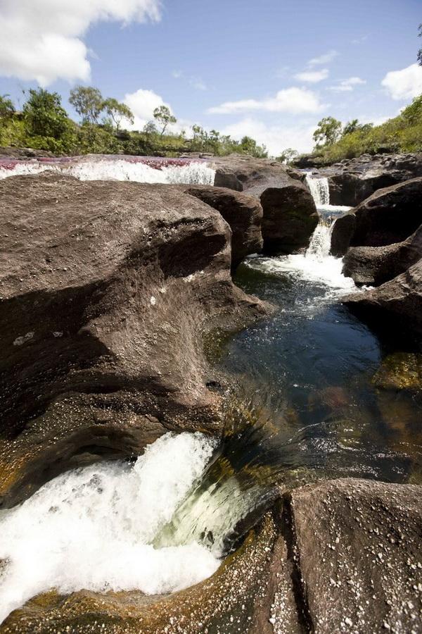 Она являются западным продолжением так называемого Гайанского щита Венесуэлы, горной гряды, пересекающей Гайану и Бразилию и считающейся самой древней на планете. Фото с сайта: citypicture.ru
