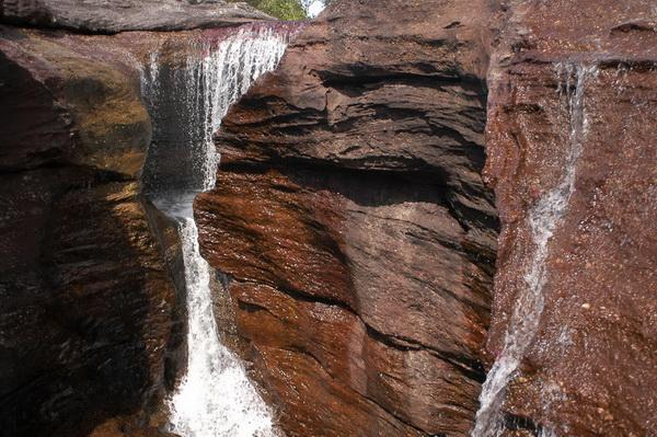 Возраст горной цепи Макарена составляет 1 миллион 200 тысяч лет. Фото с сайта: citypicture.ru