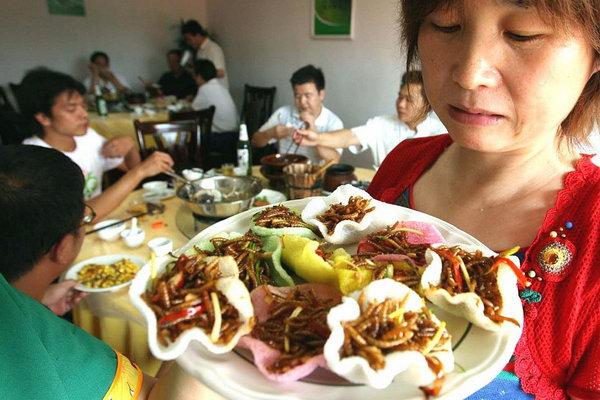 Китайцы с юмором говорят о своих гастрономических вкусах: «Мы едим все, что летает, кроме самолета, все, что имеет четыре ноги, кроме стола и стульев». Конечно же, Китай в употреблении насекомых – впереди планеты всей. Многие рестораны специализируются исключительно на блюдах, приготовленных из насекомых. Фото: bigpicture.ru