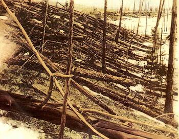 Упавшие деревья в районе Тунгусского события. Фото с сайта ru.wikipedia.org