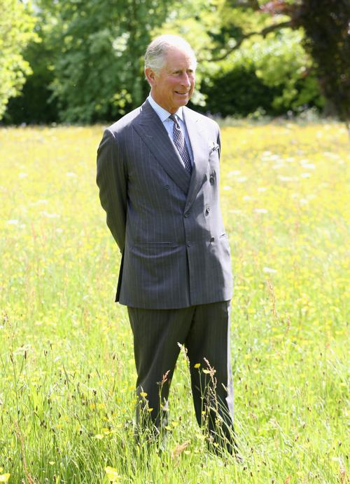 Принц Чарльз запустил проект Коронация луга в загородном доме в Тетбери. Фото: Chris Jackson - WPA Pool/Getty Images