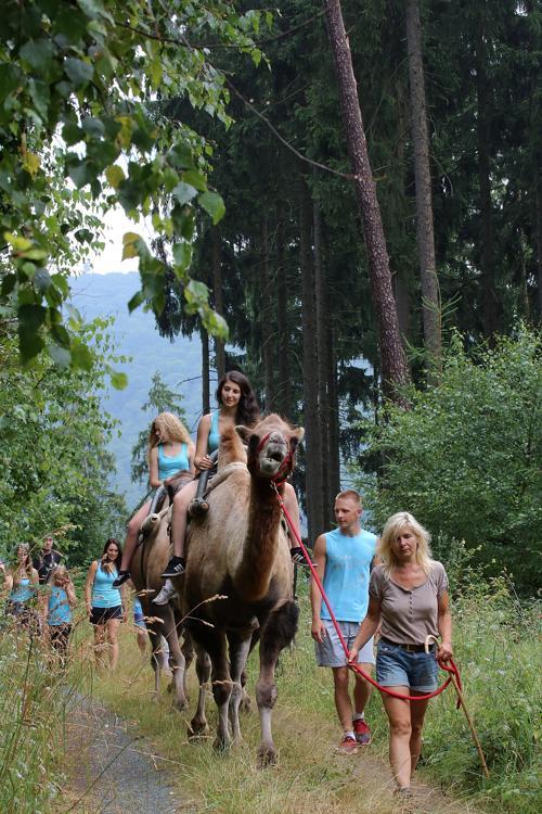 В центральной Германии предлагают совершить прогулки на верблюдах в окрестностях немецкого города Узинген. Фото: Hannelore Foerster/Getty Images