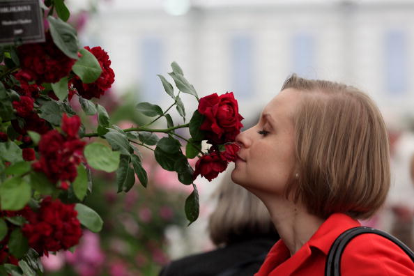 Цветочное шоу в лондонском районе Челси. Фото: Dan Kitwood/Getty Images