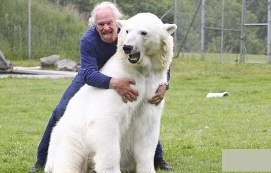 Белый медведь, человек и любовь. Фото с  kanzhongguo.com