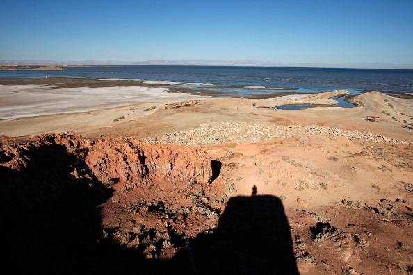 Солёное озеро Солтон-Си на юге штата Калифорния. Фото: David McNew/Getty Images