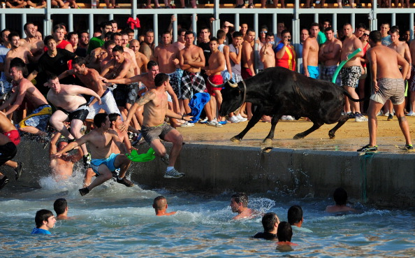 Испанский фестиваль «Быки в море». Фото: Jasper Juinen/Getty Images