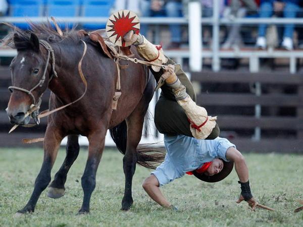 Гаучо и дикие лошади. Фото с сайта animalworld.com.ua