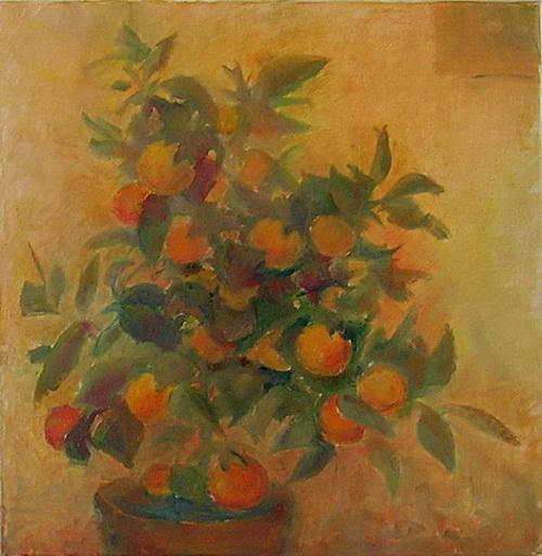 Апельсиновое дерево. Фото с сайта tarbut.zahav.ru