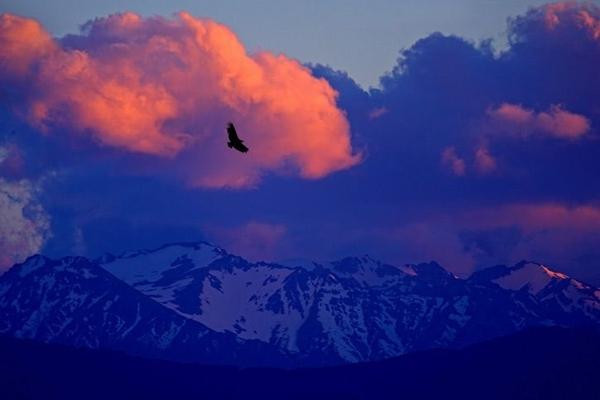 Фотогалерея. Естественная красота нашего мира. Фото: Ben Hall/xaxor.com