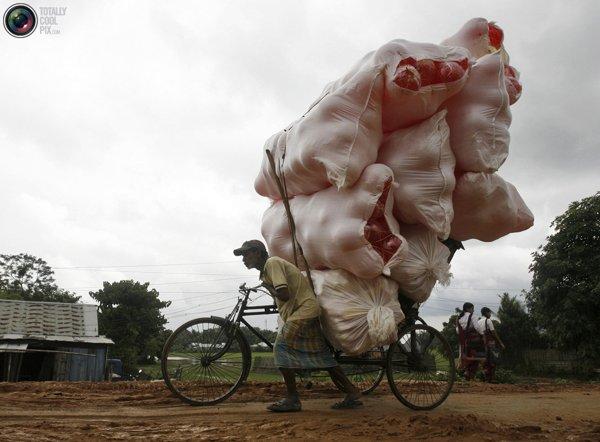 Рикша перевозит мешки с пластмассовыми мячами на велосипеде на окраине Агарталы, столицы северо-восточного индийского штата Трипура. Фото:bigpicture.ru