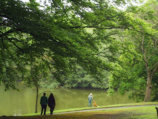 Достопримечательности Рура: Парк Штадгартен в городе Бохуме. Фото: Сима Петрова/Великая Эпоха (The Epoch Times)