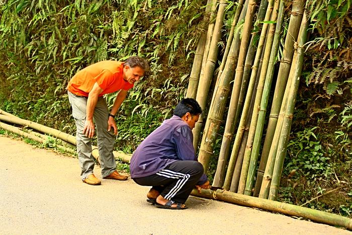 Местный житель отрезает бамбук для туриста. Дарджилинг.Darjeeling. Фото: Сима Петрова/Великая Эпоха (The Epoch Times)