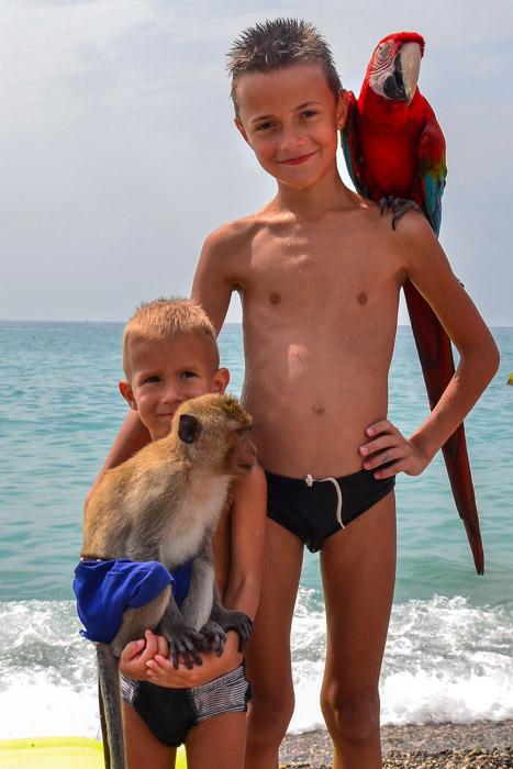 На пляже в Новой Гагре. Фото: Пётр Корнеев