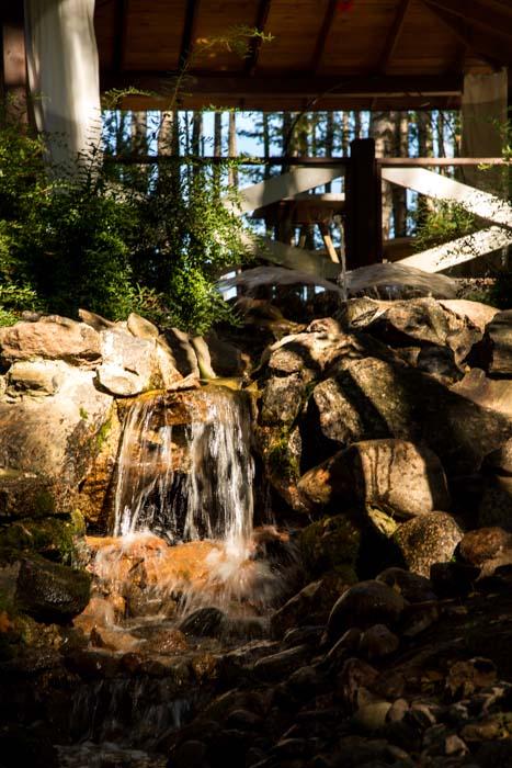 Природа на базе отдыха  «Золотая Долина» под Санкт-Петербургом. Фото: Сергей Лучезарный/Великая Эпоха (The Epoch Times)