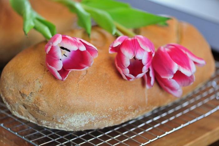 Хлеб, испечённый по рецепту из книги для начинающих Петра Рейнхарта Brother Junipers Bread Book . Фото: Cat Rooney/Великая Эпоха (The Epoch Times)