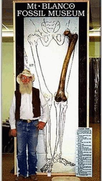 Человеческая бедренная кость, найденная в Неваде. Человек, которому она принадлежала, должен был иметь рост 2-3 метра. Фото: Minghui.org