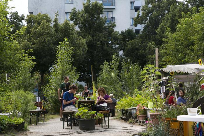Общественный сад Берлина Prachttomate. 10 августа 2013 года. Фото: Carsten Koall/Getty Images