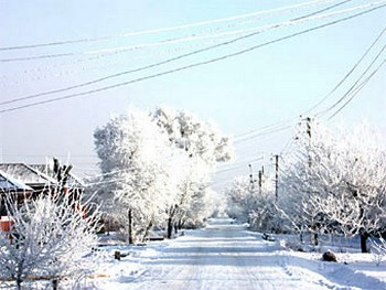 Улица в Батайске. Фото с bataysk-gorod.ru
