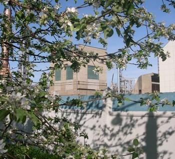 Завод ЗАО «СИБУР-химпром». Фото с официального сайта предприятия