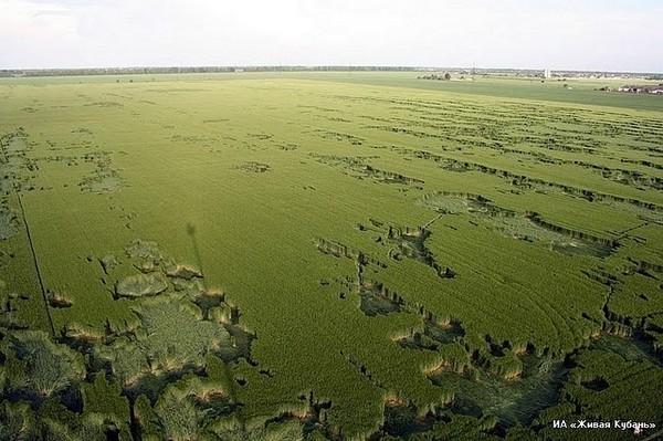 Необычные круги на полях в Краснодарском крае привлекли всеобщее внимание