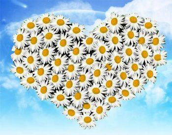 День семьи, любви и верности  начинает праздновать Москва. Фото с forlover.ru
