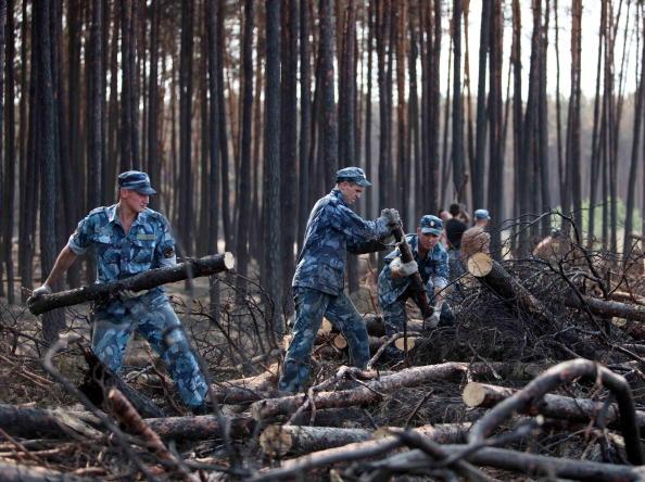 Горят торфяники, дым от торфяных пожаров затрудняет видимость на дорогах. Объявлена чрезвычайная ситуация в семи регионах РФ. Фоторепортаж.  Фото: ALEXEY SAZONOV/ARTYOM KOROTAYEV/