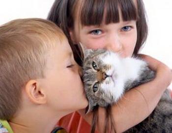 Животные способствуют улучшению успеваемости ребёнка в школе. Фото с сайта  medivuo.com