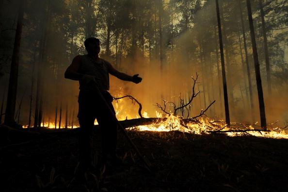 Задымление в Москве, вызванное сильными лесными пожарами, бушующими в Подмосковье,  и горящими торфяниками,  сегодня утром нарушило работу аэропортов Домодедово и Внуково. Фоторепортаж. Фото: NATALIA KOLESNIKOVA /ARTYOM KOROTAYEV