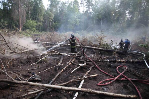 Пожар в «Лосином острове» тушили «Туманом». Фото: Alexey SAZONOV/AFP/Getty Images